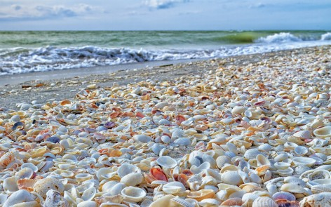 Sanibel's Famous Shelling Beach